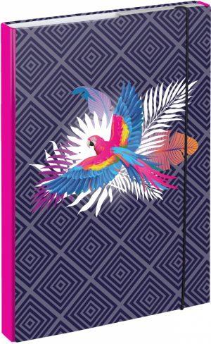 BAAGL Desky na školní sešity A4 Papoušek