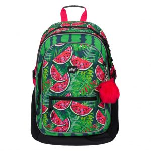 BAAGL Školní batoh Core Meloun